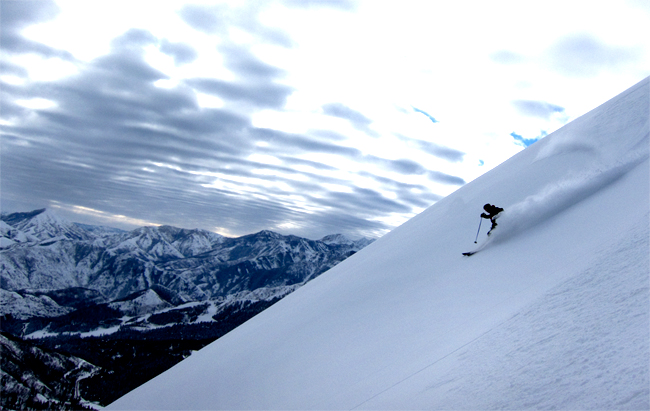 Of Freedom and Avalanches