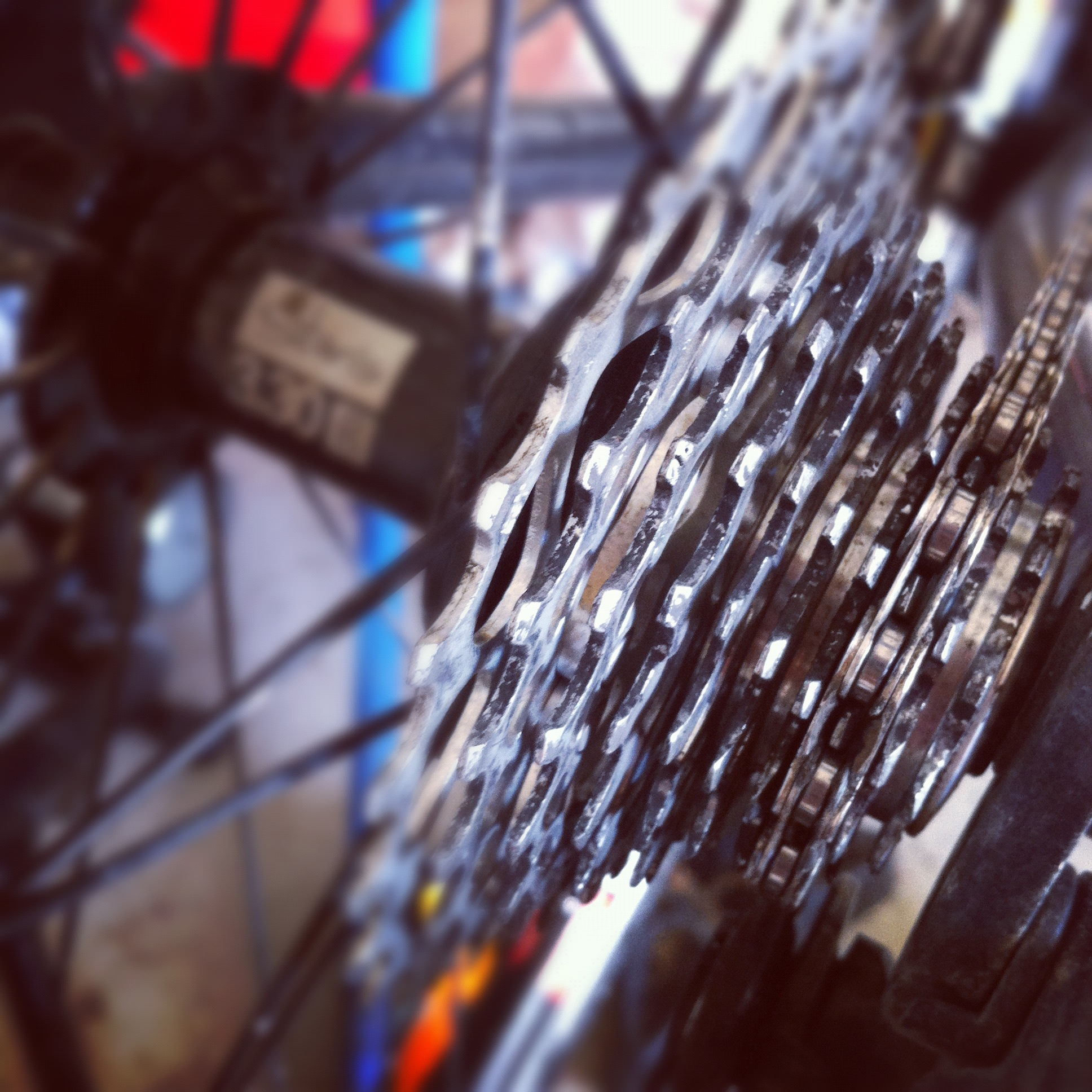 cyclocross cassette