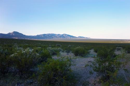 Scenic, AZ