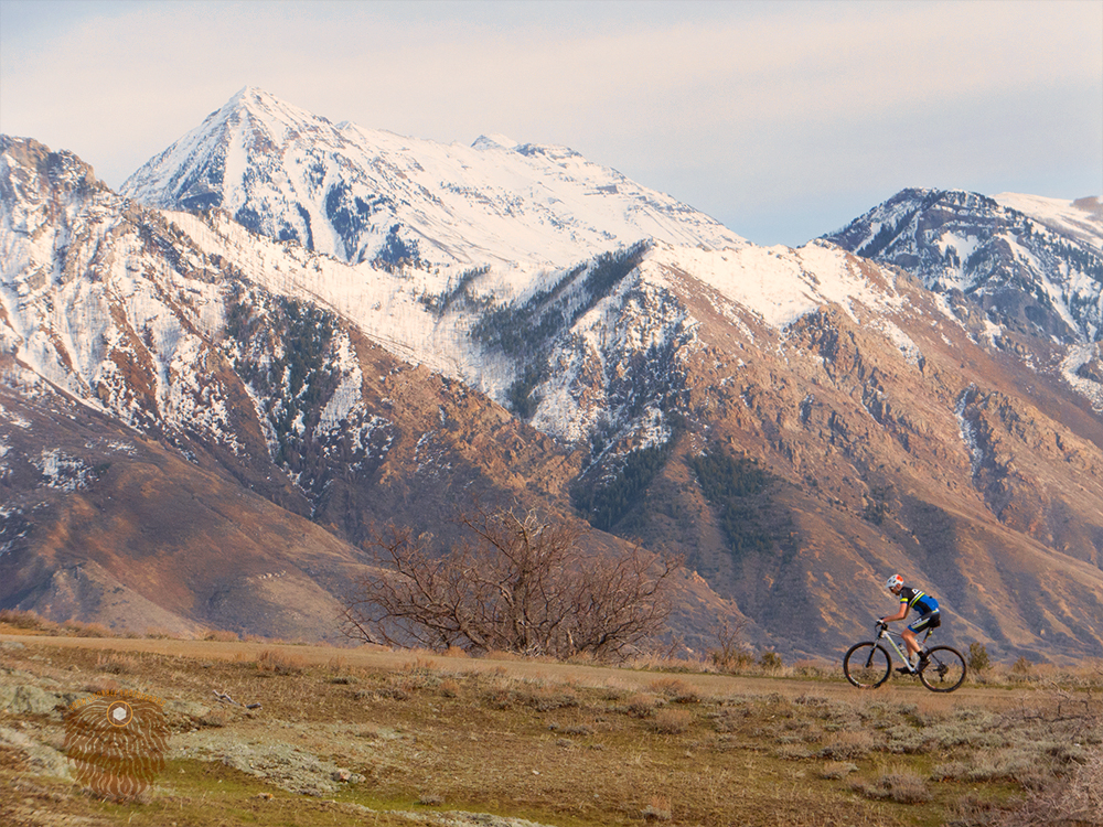 bike and timp